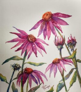 https://lolaartswi.com/wp-content/uploads/2021/06/cropped-watercolor-coneflowers-pic-1.jpg